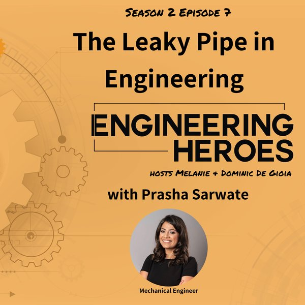 Artwork The Leaky Pipe in Engineering with Prasha Satwate
